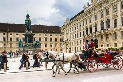 כרכרה על רקע העיר העתיקה של וינה