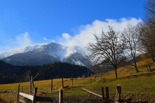 הרי רקס אוסטריה